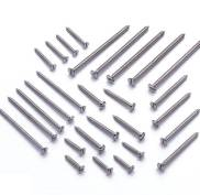 S.S. C.S.K. & Pan Sloted Self Taping Screws